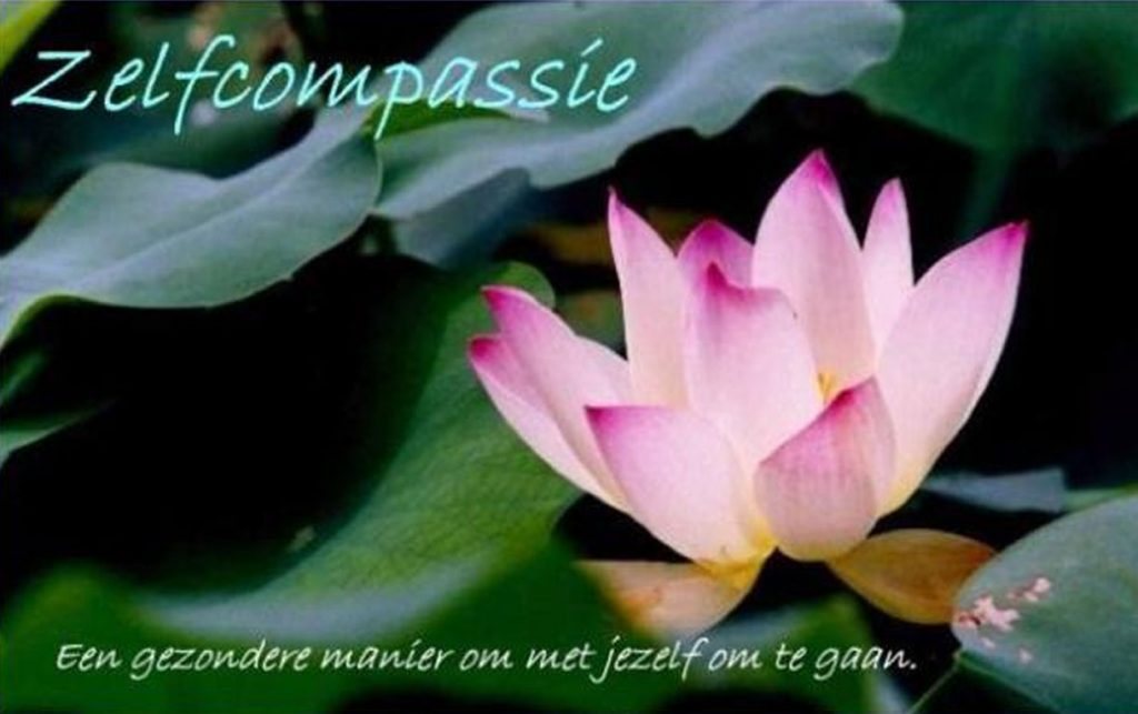 Home zelfcompassie